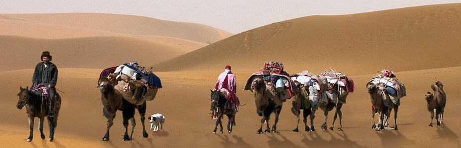 silk road thesis statement How religions and philosophies spread throughout the silk road over the centuries.